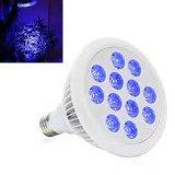 Professional LED Lámpara de crecimiento para plantas