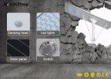 Solarder straßenlaterne120w mit Sunpower Sonnenkollektor u. Lithium-Batterie