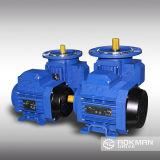 Motor eléctrico de China de la impulsión de Aokman