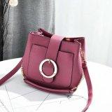 Signora Handbag (WDL0074) di vendita di alta qualità piccola di modo caldo del progettista
