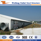 La Chine La conception et la structure en acier préfabriqués de matériel de la volaille