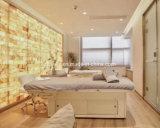 Elektrische Salon Massage tafel Massage Bed voor SPA