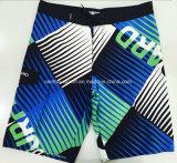 Vêtements de bain de circuit de panneau d'hommes modelés par polyester plat de taille d'Oeko-Tex