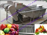 과일 야채 거품 세척 거품 청소 세탁기 기계