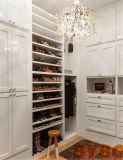 Свет - серый шкаф с отраженными шкафами тщеты состава (BY-W-24)
