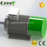 10kw 100kw 바람 터빈을%s 낮은 Rpm 영구 자석 발전기