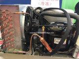 Facile d'installer le réfrigérateur de compresseur à gaz naturel
