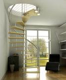 Las escaleras espirales clásicas más de alta calidad con la pisada de cristal de la escalera y la barandilla del acero inoxidable