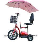 3つの車輪の電気計量器は女性のための移動性のスクーターに乗る