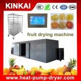 Asciugatrice della frutta dell'asciugatrice del mango dell'uva industriale dell'asciugatrice