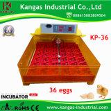 Les plus populaires de haute qualité Choix de l'Agriculteur 36 Mini-incubateur de l'oeuf (KP-36)
