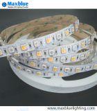 Lumière de bande flexible du guide optique DEL de bande de DEL pour la promotion