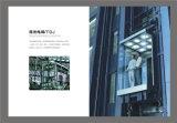 Zuinig panoramische lift Sightseeing Villa / Home Elevator met Glass