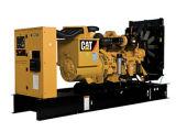 Los generadores de cat.