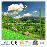 Bester Preis-heißer eingetauchter galvanisierter örtlich festgelegter Knoten-Bereich-Zaun