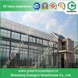 Invernadero de cristal inteligente Growing vegetal de la agricultura
