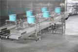 La boulette normale de la CE ébrèche la ligne de fabrication