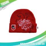 Новые модные вязаные акрилового волокна зимой теплый реверсивный Red Hat/крышку (073)