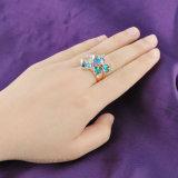 女性のアクセサリの白い金の大きい石造りの宝石類のリング