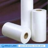El papel de impresión láser con varias especificaciones (TT001)