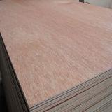 madera contrachapada de Bintangor del grado de la base BB/CC del álamo de 18m m