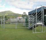 Os rebanhos animais colocam a porta da cerca da exploração agrícola para o gado carneiros ou cavalo