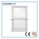낮은 E 유리 PVC Windows를 가진 Roomeye PVC 두 배 걸린 Windows