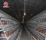 販売/層ケージ/デザイン層の鶏のケージのための商業ニワトリ小屋