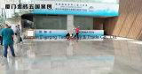 Populair Opgepoetst Chinees Grijs Marmer voor Tegels, Bevloering, Countertops, Bleke Zilveren Grijze Draak