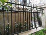 Jardim de alumínio forjado ferro/Porta da cerca de protecção