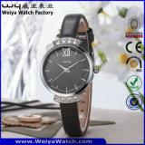 Orologi casuali delle signore della vigilanza del quarzo della cinghia di cuoio del ODM (WY-076E)