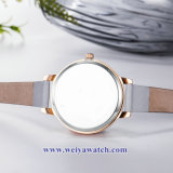 OEM 주문 숙녀 석영 Wist 시계, 숙녀 시계 (WY-17036B)