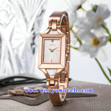 주문 설계하십시오 시계 합금 호화스러운 스테인리스 시계 (WY-040D)를