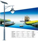 Lumière économiseuse d'énergie de bille de jardin de DC12V DEL dans le réverbère solaire