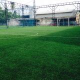 S форма 50мм искусственного газона спорта в течение 5 Player игровая площадка в Таиланде