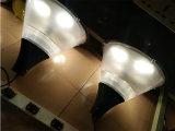 공원을%s LED 정원 점화