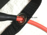 Singola figura tubo della fascia di esercitazione di 8-Shape ed ancoraggio del portello