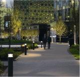 Het LEIDENE van het Behoud van de energie Licht van de Tuin (GA08)