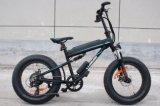 la nueva grasa del estilo de 36V 250W cansa la bici eléctrica