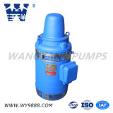 Асинхронный двигатель Пол-Вала серии Vhs (IP23) вертикальный для глубокого хорошего насоса