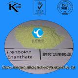 Tren Enan Karosserien-Gebäude-Steroid-Puder Trenbolone Enanthate CAS: 472-61-5