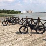 바닷가 함 전기 자전거 전기 뚱뚱한 타이어 자전거
