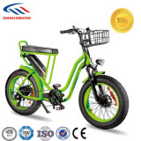 20inch女性Fat Tire Electric Bike
