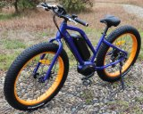 세륨을%s 가진 8 재미 모터 뚱뚱한 타이어 전기 자전거
