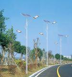 réverbère solaire de 12V 30W DEL avec les lampes extérieures