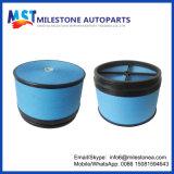 Auto filtro de ar P618239 de Mann Ca5421 70320440 para Volvo