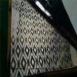 Вытравленная ранг 316 листа 304 нержавеющей стали для украшения стены