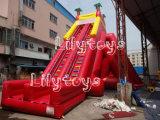 Trasparenza gonfiabile della grande trasparenza del PVC di Lilytoys per affitto