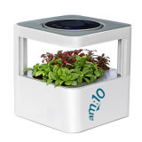 Am: 10 Smart-Forest экологической очистки воздуха с растениями, анионов, аромат и фильтр выходящего воздуха HEPA