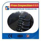 Codo forjado estándar del acero de carbón del estruendo 90 grados